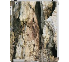 Wood iPad Cover iPad Case/Skin