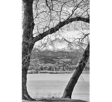 View Through The Trees To Longs Peak BW Photographic Print