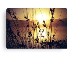 Wish today didn't end Canvas Print