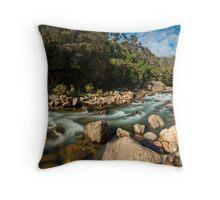 Karangahake Gorge Throw Pillow
