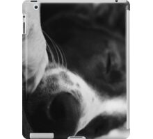 Collie iPad Cover iPad Case/Skin