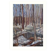 Winter Scene in Rock Creek Park Art Print