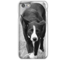 Collie Phone Cover iPhone Case/Skin