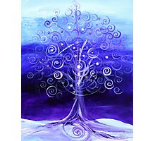 WINTER TREE, Abstract Tree Art, COLD, Beautiful Blues, Violets, NICE!! Must see!! Photographic Print