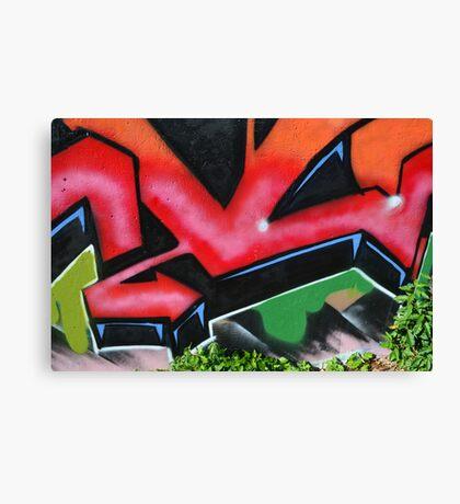 Graffiti close up - Canvas Print