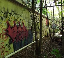 Graffiti from an old allyway - by Schoolhouse62