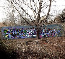 Graffiti in an old abondon parking lot - by Schoolhouse62