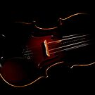 Violin in the Void  by Darren Bailey LRPS