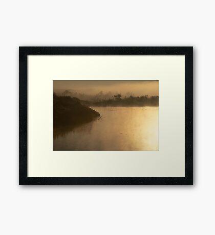 Ode to Monet Framed Print