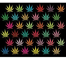Cannabis Leaf Multi-coloured Pattern Photographic Print