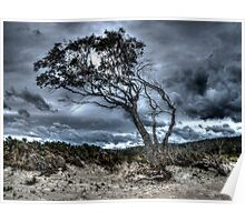 Foreboding - approaching storm: HDR at Rheban Beach, Orford, Tasmania, Australia Poster