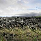 Waves of clouds, sea, lava and grass by Ellen Cotton