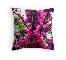 Mistic Drive Spring Throw Pillow