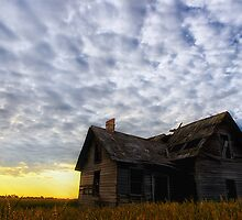 On Golden Field #2 by Mark Iocchelli