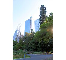 Sydney City from the Park Photographic Print