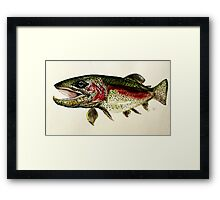ALASKAN RAINBOW TROUT ART, from J. Vincent Scarpace. AWESOME, MUST SEE Framed Print