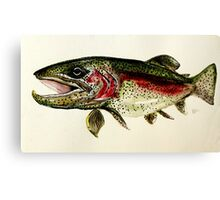 ALASKAN RAINBOW TROUT ART, from J. Vincent Scarpace. AWESOME, MUST SEE Canvas Print