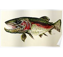 ALASKAN RAINBOW TROUT ART, from J. Vincent Scarpace. AWESOME, MUST SEE Poster