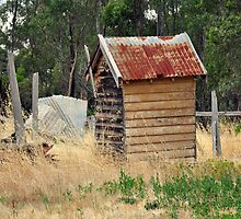 the old outhouse by Leone
