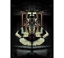 The Framed Woman 2 Photographic Print