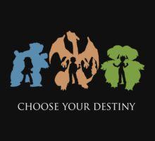 Choose Your Destiny by NoveCento