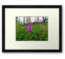 Set Me On Fire ~ Wildflowers ~ Framed Print