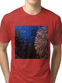 Santa Fe Tri-blend T-Shirt