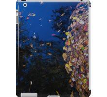 Santa Fe iPad Case/Skin