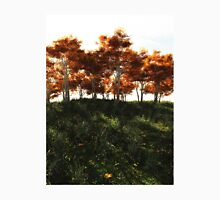 Autumn Trees in Sunshine Unisex T-Shirt