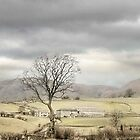 Winter Hills by patrixpix