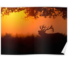 Red Deer at Dawn Poster