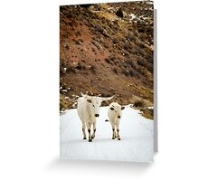 A Walk in the Snow Greeting Card