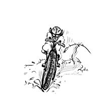 Mountain bike sheep Photographic Print