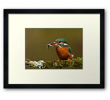 Lady With a Fish Framed Print