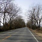 Highway 70 Arkansas by WildestArt