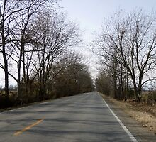Highway 70 Arkansas by WildestArt