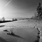 Crossroads by Mark Iocchelli