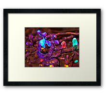 Coloured Ice! Framed Print