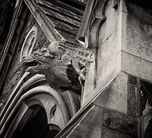 Gargoyle by PhotosByHealy