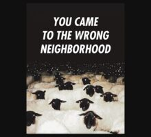 Wrong Neighborhood ! by electrosterone