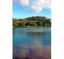 Waokele Pond and Koi Study 1  Photographic Print
