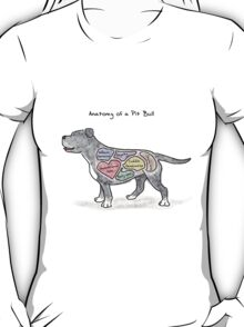 Anatomy of a Pit Bull T-Shirt
