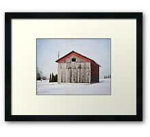 Will I make it through another winter? Framed Print