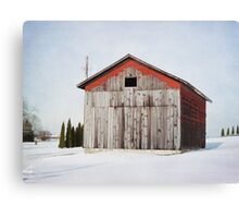 Will I make it through another winter? Canvas Print