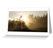 Sunrise bursting through trees and mist Greeting Card
