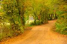 Arkansas Country by NatureGreeting Cards ©ccwri