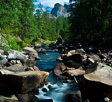 Yosemite's beauty by Hvistendal Photography