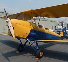 An Old Classic Aircraft by stevealder
