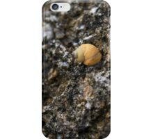 rough periwinkle  iPhone Case/Skin