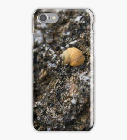 rough periwinkle  iPhone Case/Skin